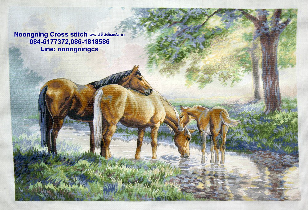 ครอบครัวม้า ครอสติสพิมพ์ลาย