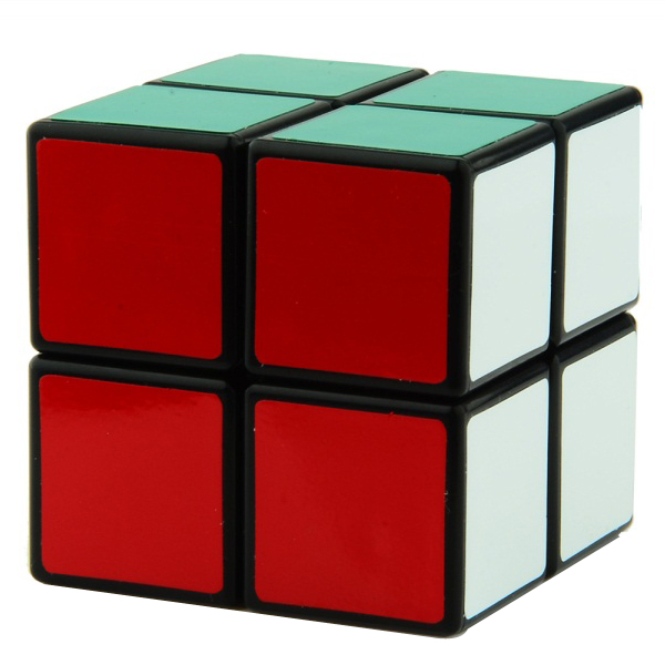 ShengShou 2x2x2 Black Edition
