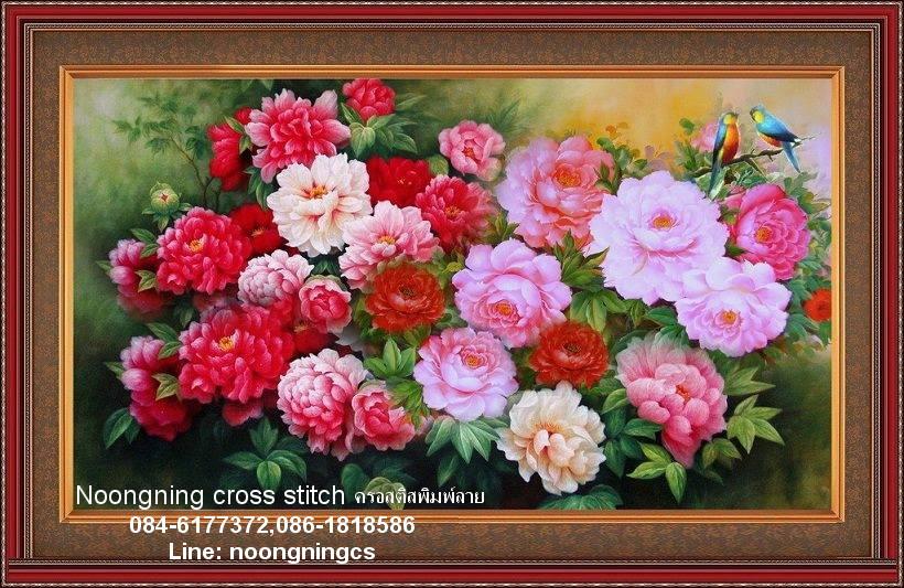 ดอกโบตั๋น พญาแห่งดอกไม้ ครอสติชจีน