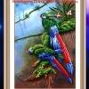 นกแก้ว ภาพติดเพชรDiamond painting