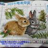 กระต่ายคู่มงคล ครอสติสปักสำเร็จ