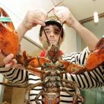 Switzerland ออกกฎหมายห้ามร้านอาหารต้ม Lobster ทั้งเป็น