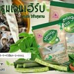 Moringa tea by Healthy Gen Herb ศูนย์จำหน่ายราคาส่ง ชามะรุมเฮลตี้ ส่งฟรี