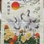 นกยูง คลอสติสพิมพ์ลาย thumbnail 9