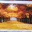 ม้ายูนิคอร์น3D ครอสติสพิมพ์ลาย thumbnail 13