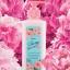 โลชั่นน้ำหอม Mistine Pretty Blooms Perfume Lotion มิสทีน พริตตี้ บลูม เพอร์ฟูม 190ml thumbnail 1
