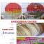 วิวบ้านครอสติสจีนพิมพ์ลาย thumbnail 6