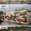 ศาสนาความเชื่อครอสติสจีนพิมพ์ลาย thumbnail 17