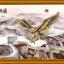 เหยี่ยว กำแพงเมืองจีน ภาพติดเพชรDiamond painting thumbnail 1