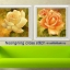 ดอกไม้ คลอสติสพิมพ์ลาย thumbnail 1