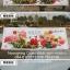 เทพฮกลกซิ่ว ชุดปักคลอสติช พิมพ์ลาย งานฝีมือ thumbnail 14