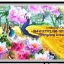 นกยูงคู่ดอกโบตั๋น ครอสติสคริสตัล Diamond painting ภาพติดเพชร DIY thumbnail 1
