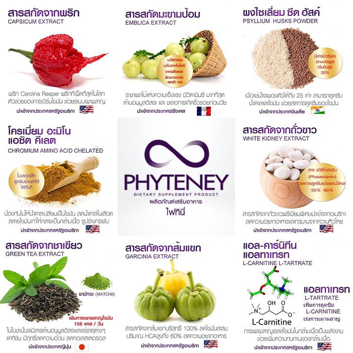 Phyteney ไฟทินี่ ลดน้ำหนัก