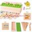 ของเล่นเสริมพัฒนาการ ของเล่นไม้ ของเล่น Learning Classification Box thumbnail 5