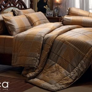 ชุดเครื่องนอน ผ้าปูที่นอน JESSICA Cotton 100% พิมพ์ลาย เส้นสก๊อต รุ่นC968